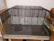Terrarium Hamsterkäfig