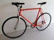Rennrad Shimano 600 Ultegra Tricolor