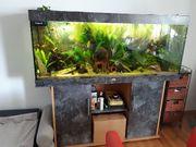 Aquarium Juvel Rio 450l