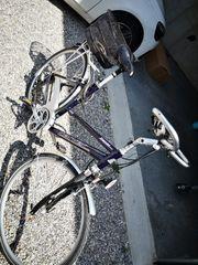 Carver 28 Damen Fahrrad