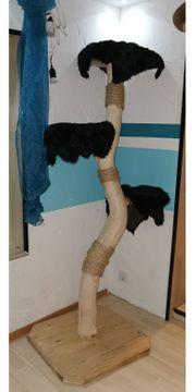 Neuer Natur Kratzbaum