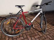Herrenrad MTB Crossrad