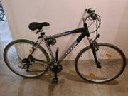 Herren Fahrrad Triumph 26 Zoll