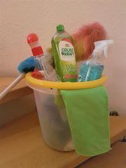Putz- u Bügelhilfe gesucht
