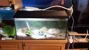 Aquarium komplett set