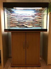 EHEIM Aquarium mit Unterschrank