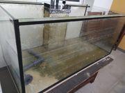 Becken 120x60x60 mit Ablaufschacht und