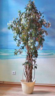 Ficus künstlich Wunderschön