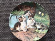 Wandteller Seltmann Weiden Katzen im