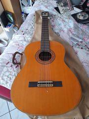 spanische Konzertgitarre