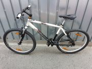 Mountainbike Crosswave