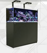 Meerwasseraquarium Salzwasser Red Sea Reefer