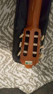 eltere luxsor gitare