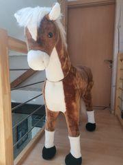 Mein erstes Pony Max