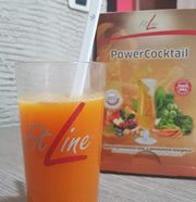 Fitline PowerCocktail