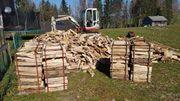 Brennholz 50cm zu verkaufen