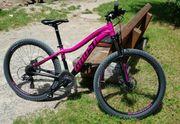 Ghost Damen Bike Berrypink