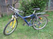 Mountainbike Fahrrad Rad für Jugend