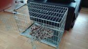 Hundetransportbox Hundekäfig WIE NEU