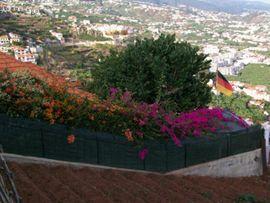 Ferienhäuser, - wohnungen - Haus auf Madeira