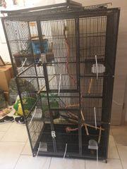 Rattenkäfig Vogelkäfig