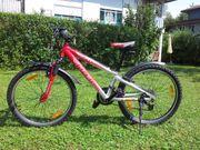 Rot-silbernes Mountainbike Kinderfahrrad 24 Marke