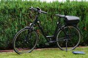 Fahrrad Pegasus Premio