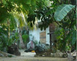Ferienimmobilien Ausland - Haus in Mexiko 1km von
