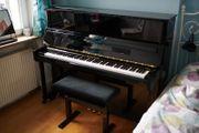 Bechstein Academy Klavier A 124