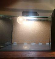Aquarium 60x35x40 cm