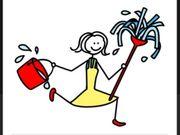 Reinigungshilfe gesucht