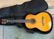 Gitarre Gitarrenständer