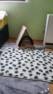 Katzenkratzbrett mit bürste
