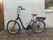 Vital Bike Pedelec mit Ansmann