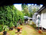 Gartenhelfer für leichte Gartenarbeiten gesucht