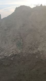 Humus Mutterboden