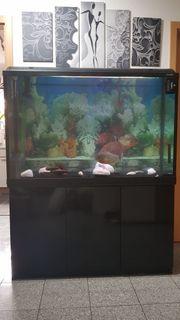 Aquarium von Waterhome 300l mit