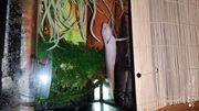 Axolottel Krallenfrosch