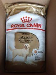 Hundefutter Royal Canin Labrador