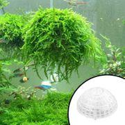 Verkaufe bepflanzbare schwimmende Moosbälle