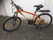 Giant Fahrrad Herrenrad