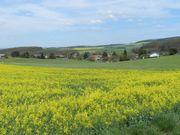 Bauernhof im Nordpfälzer Bergland - Beteiligung