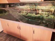 Aquaterrarium 700 ltr incl Zubehör