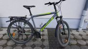 Focus Mountainbike MTB 26 Zoll