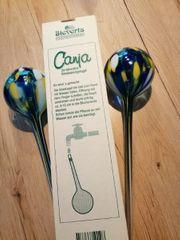 Canja Bewässerungskugeln aus Glas