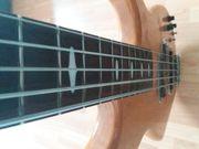 E-Bassunterricht in Frankfurt Nordend