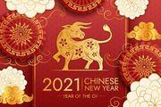Neu Chinesische Schamlippen Massage Gesund