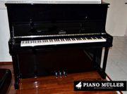Neues Klavier Berdux Modell F
