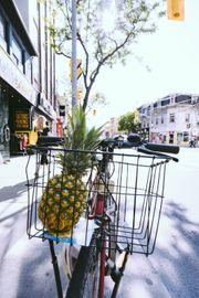 Einkaufsdienst mitten in Nürnberg flexibel