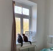 Suche Zweizimmerwohnung in Bamberg